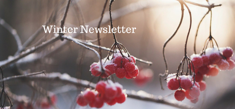 Winter Newsletter 750x350
